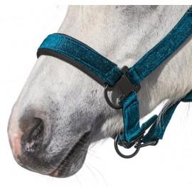 Kötőfék Athina, Horse-friends