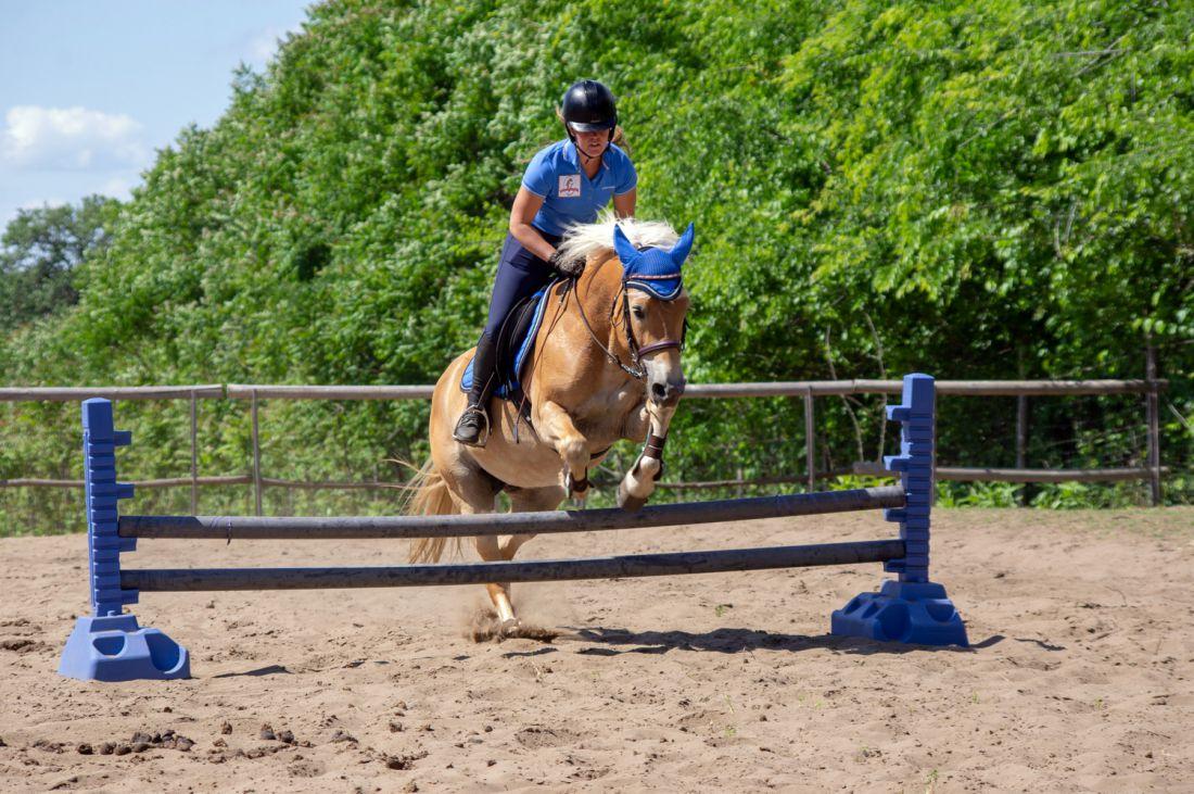 lovasoktatás-lovasiskola